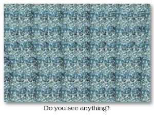 Do you see anything